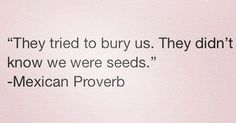 """""""They tried to bury us. They didn't know that we were seeds."""" -Mexican proverb"""