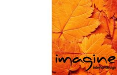 imagine interior design  new graphic design services