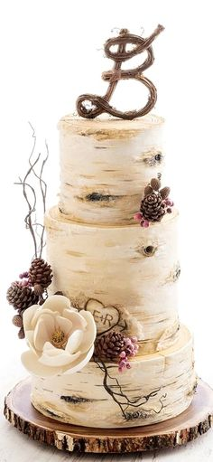 Super birch tree wedding cake topper 20 Ideas The Effective Pictures We Offer You About Wedding Cake elegant A quality picture can tell you many things. You can find the most beau Pretty Wedding Cakes, Black Wedding Cakes, Wedding Cake Rustic, Wedding Cakes With Flowers, Wedding Cake Designs, Rustic Cake, Cake Wedding, Vintage Wedding Cake Toppers, Wedding Ideas