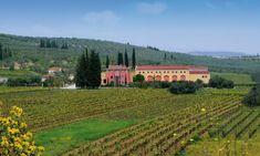 Lafazanis Winery Wineries, Vineyard, Tours, Outdoor, Outdoors, Wine Cellars, Vine Yard, Vineyard Vines, Outdoor Games