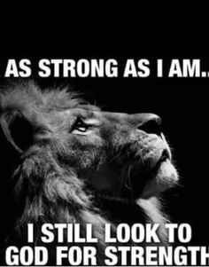 Tattoo quotes about strength warriors jesus 46 ideas - Tattoo Design Prayer Quotes, Faith Quotes, Wisdom Quotes, True Quotes, Bible Quotes, Qoutes, Jesus Quotes, Tattoo Quotes About Strength, Quotes About God
