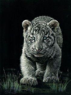 animals in scratch board | Animals - Lesley Barrett Scratchboard Art #tiger #wildlifeart #tigerart