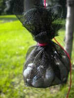 How To Use Mothballs As Snake Repellent Natural Snake