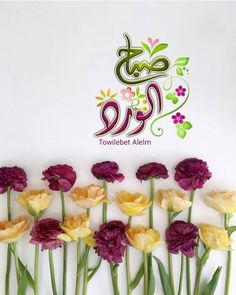 Morning Greetings Quotes, Morning Quotes, Islamic Messages, Islamic Quotes, Morning Wish, Morning Images, Qoutes, Place Card Holders, Instagram