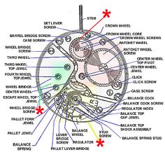 In this image, you will find Watch glossary anatomical structure in it. Cool Watches, Watches For Men, Picture Watch, Men Accesories, Accessories, Breitling Watches, Glue Crafts, Mechanical Watch, Beautiful Watches