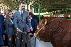 Taking a step back: Letizia takes cover behind husband King Felipe as they get close to a bull during a fair  Read more: http://www.dailymail.co.uk/femail/article-2778248/Is-raging-bull-Felipe-Queen-Letizia-takes-cover-husband-Spanish-royal-couple-come-face-face-angry-looking-beast-farm-show.html#ixzz3F0mX6DdM  Follow us: @MailOnline on Twitter | DailyMail on Facebook