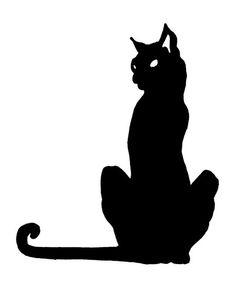 O gato preto                                                                                                                                                                                 Mais