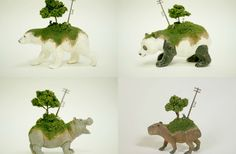 Miniature-ception: tiny animals carrying tiny worlds on their backs