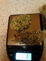 High quality grade marijuana   Medical cannabis extracts   Marijuana edibles    Cannabis innovation, activism, medicine, and compassion. https://www.marijuanaplug.com/