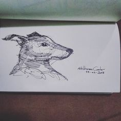 "104 curtidas, 3 comentários - Autoria: @altillierme_carlo (@desenhos_do_alti) no Instagram: ""Spot, my dog  #desenhosdoalti #desenhos #sketch #sketchers #sketchbook #art #artlovers #artbrazil…"""