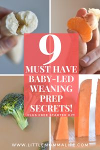 Nine Must See Secrets for Baby Led Weaning Food Prep little momma life Nine Must See Secrets for Baby Led Weaning Food Prep little momma life Megan Bristow Little Momma Life nbsp hellip Baby Led Weaning 7 Months, Baby Led Weaning First Foods, Baby First Foods, Baby Finger Foods, Baby Muffins, Baby Snacks, Baby Meals, Sweet Potato Spinach, Baby Led Weaning Breakfast