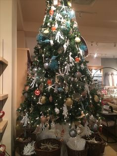 Christmas tree at pottery barn