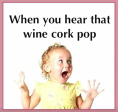 When you hear that wine cork pop. Premium wines delivered to your door. Get wine. Get social. Wine Jokes, Wine Meme, Wine Funnies, Best Quotes, Funny Quotes, Wine Humor Quotes, Funny Wine Sayings, Drink Quotes, Sarcastic Quotes