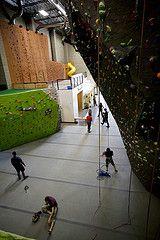 Sport Climbing, Climbing Wall, Rock Climbing, Bouldering, Vancouver, Around The Worlds, Walls, Gym, City