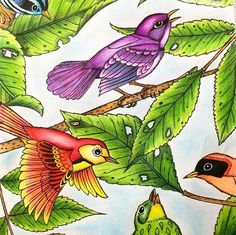 --> If you're looking for the top adult coloring books and writing utensils including colored pencils, drawing markers, gel pens and watercolors, visit our website at http://ColoringToolkit.com. Color... Relax... Chill.