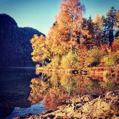 🍁🌳😍 Ist der Herbst und seine Farben nicht ein Wahnsinn? Ich liebe diese Jahreszeit! 🍁🌳😍  #Regram via @green_kitz Wilder Kaiser, River, Places, Nature, Outdoor, Madness, Seasons, Fall, Love