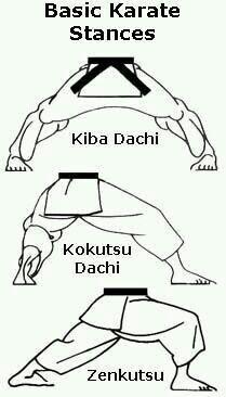 Osnovni stavovi. #karateklubwinnernovisad