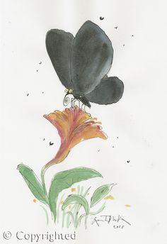 Black butterfly on f