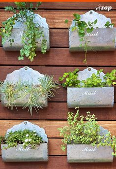 Container Gardening For Beginners. Grow herbs, flowers and other plants in containers like pots and old mail boxes. Small Space Gardening, Garden Spaces, Small Gardens, Outdoor Gardens, Vertical Gardens, Vertical Planting, Mailbox Planter, Old Mailbox, Mailbox Ideas