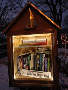 You might not suspect it, but your book-sharing box probably gets late-night visitors. It's more common than you think! But keeping your Little Free Library lit up for those night-owl browsers can be a challenge. Solar lights to the rescue! Adding a solar light is a long-term, eco-friendly lighting solution, and it's exactly what stewards [...]
