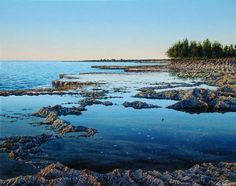 Evening Reef, Shark's Cove, Mark Cross