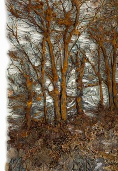 Lesley Richmond is a textile artist inspired by natural forms and textures. Textile Fiber Art, Textile Artists, Glue Art, Landscape Art Quilts, Creative Textiles, Nature Artists, Found Art, Thread Painting, Encaustic Art
