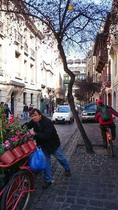 Santiago. Barrio Italia