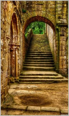 Steps...    Fountains Abbey,   Ripon,   North Yorkshire