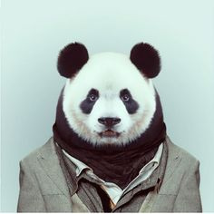 Zoo portraits photo-montage by Yago Partal, a graphic artist based in Barcelona.