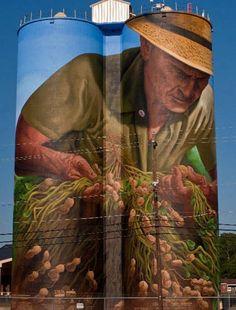 Birdsong Peanut Co. Painted Silo by The Suss-Man (Mike) amazing street art Sidewalk art. Murals Street Art, 3d Street Art, Amazing Street Art, Street Art Graffiti, Street Artists, Amazing Art, Banksy, Trompe L Oeil Art, Art Du Monde