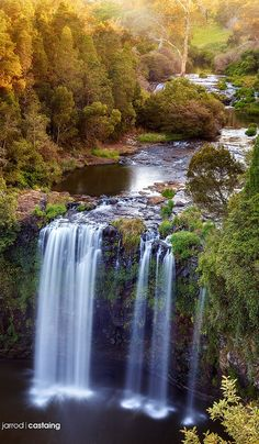 Sunset at Dangar Falls near Dorrigo on the Bielsdown River in New South Wales, Australia