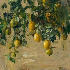 Quang Ho, Lemon Tree