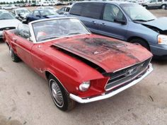 Red Ford Convertible Mustang For Sale Cheap Mustang Convertible For Sale, Mustang For Sale, Ford Mustang Convertible, Sn95 Mustang, Ford Mustang Fastback, Project Cars For Sale, 1967 Shelby Gt500, Custom Muscle Cars, Old Fords