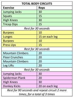 Total Body Circuits