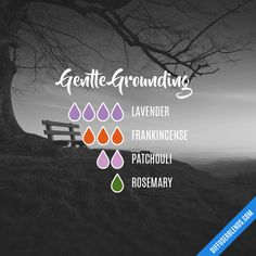 Essential Oil Patchouli Tips And Strategies For patchouli essential oil perfume Essential Oils Guide, Essential Oil Scents, Essential Oil Perfume, Essential Oil Diffuser Blends, Essential Oil Uses, Doterra Essential Oils, Grounding Essential Oil, Essential Oil Combinations, Wellness