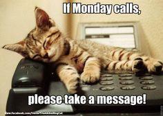 Hang up
