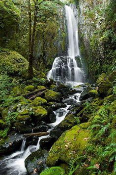 Kentucky Falls Oregon
