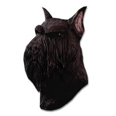 Schnauzer Head Plaque Figurine Black This beautiful Schnauzer plaque is cast from a piece of hand carved wood. The wood is hand carved to give the dog a two dimensional detailing. The plaque is then cast from the wooden mold and hand painted. Made in the USA, these plaques can be hanged on any wall …