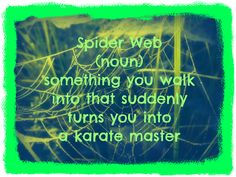 words defined..... funny word quote spider web