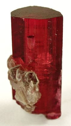 Tourmaline var. Rubellite, Lepidolite / Jonas Mine, Minas Gerais, Brazil