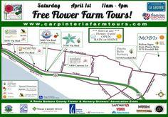 Carpinteria FREE Flower Farm Tours on April 1. Get to Know Your Local Flower Farms
