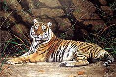"""Jorge Rajadell, """"Tigre"""" óleo 60 x 80 cm."""