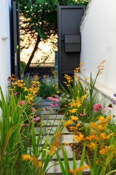 Coastal Gardens, Small Gardens, Outdoor Gardens, Side Garden, Garden Paths, Small Garden Design, Front Yard Landscaping, Dream Garden, Garden Planning