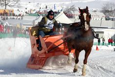 See the Quebec City Winter Carnival derby with Maple Leaf Tours