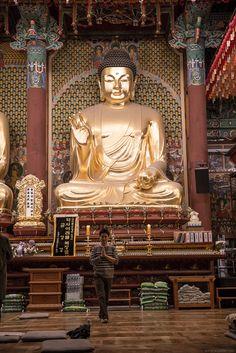 석가탄신일2016 연등회 풍경 'Lotus Lantern Festival  2016년 석가탄신일의 풍경입니다. 부처님 오신날  광화문광장, 조계사, 청계광장의 풍경과 연틍회으 행렬을 담았습니다.  올해도 화려한 연등과 행렬에 많은 사람이 참석을 하여 다채로운 행사가 진행이 되었습니다.   #석가탄신일 2016 #연등회 'Lotus Lantern Festival- 우리들체질체형방송 https://youtu.be/9wfSaFWU5JY  #사상체질진단법 동영상 https://youtu.be/YEtaYUHSMvg  #체형교정건강법 동영상 https://youtu.be/ZJZ_y67GhrY  #디스크, #체형교정, #사상체질, #다이어트, #통증 전문 #우리들한의원 대표원장 #김수범 #한의학박사   http://www.wooree.com  김수범박사의 #맛집 추천 http://www.iwooridul.com/sasang/recommendation-restaurants