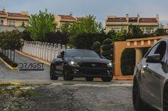 #mustang #gt #5.0 #american #muscle #petrol