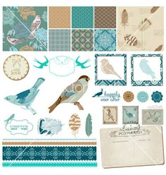 Vintage birds and feathers vector by woodhouse84 on VectorStock®