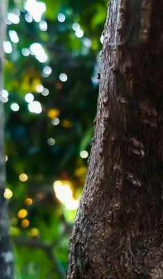 Vp background keep support please 🙏🙏🙇🙇 arushi singh official 🔥🔥🔥 Blur Image Background, Blur Background In Photoshop, Desktop Background Pictures, Black Background Photography, Photo Background Editor, Studio Background Images, Banner Background Images, Picsart Background, Naturaleza