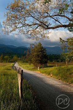 Hyatt Lane Cades Cove Great Smoky Mountains