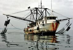 Presidential Task Force on Combating Illegal, Unreported, and Unregulated (IUU) Fishing and Seafood Fraud :: NOAA Fisheries Shrimp Boat, Sailboat Painting, Fishing Vessel, Boat Art, Tug Boats, Vintage Fishing, Boat Plans, Fishing Boats, Artist Art